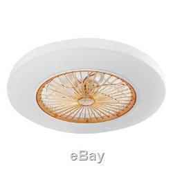 22.6 Inch Modern Ceiling fans LED Light Chandelier 3 Color/Speed Change Remote