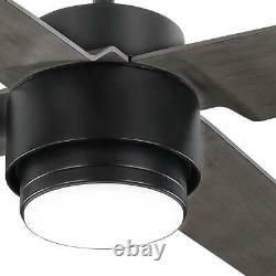 Décorateurs D'accueil Dinton 52 In. Ventilateur Noir Noir De Plafond Mat De Couleur Blanche Changeant